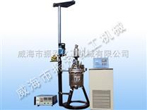 電加熱磁力高壓反應釜