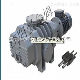ZJ型三叶罗茨真空泵